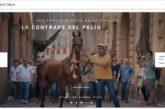 Con Google Arts & Culture viaggio virtuale nei tesori di Siena