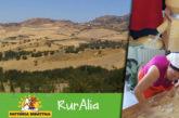 Study tour a RurAlia lancia Alia come destinazione turistico-didattica
