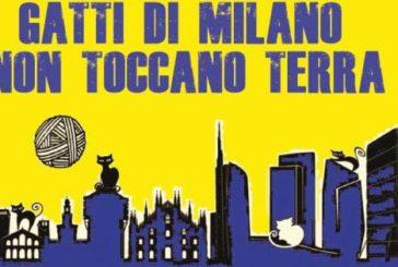 Clochard guide d'eccezione per scoprire una Milano insolita
