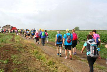 Maratona lungo la Francigena: si parte il 21 ottobre da Siena