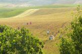 Pasquetta e 25 aprile immersi nella natura: ecco le proposte di Ruralia