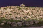Settesoli illumina il parco di Selinunte: raccolti 200 mila euro