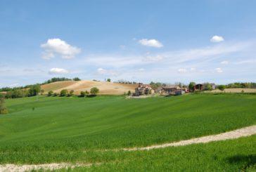 Merenda ed escursione sulle colline dell'Oltrepo Pavese con Calyx