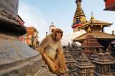 Con Viaggigiovani.it alla scoperta del Nepal, nuova meta del 2017