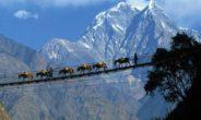 La Cina chiude ai turisti la sua parte dell'Everest per emergenza rifiuti
