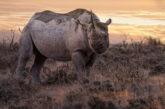 Sorvolare la Namibia con il tour di Gattinoni Travel Experience