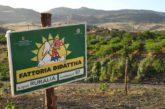 Ruralia invita adv e to per una domenica alla scoperta delle tipicità