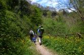 Federparchi lancia appello per vacanze per tutelare aree protette