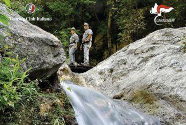 TCI e Arma Carabinieri insieme per svelare il patrimonio naturale italiano