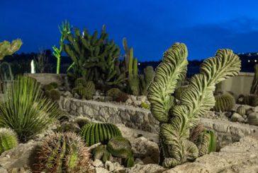 Festività dal fascino esotico al Garden Cactus B&B di Favara