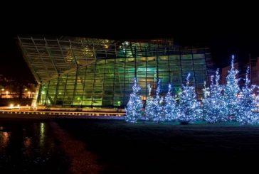 Dicembre ricco di eventi al Muse di Trento
