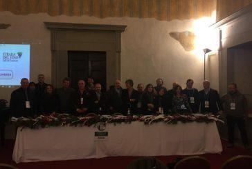 Nasce il coordinamento nazionale delle Strade del vino, dell'olio e dei sapori