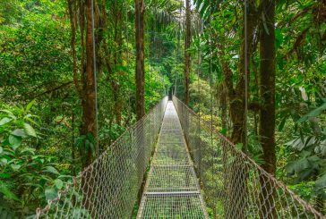 Alla scoperta di Costa Rica, Caraibi e Guatemala con Made