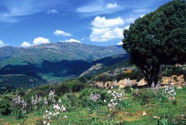 In Ogliastra al via progetto territoriale 'Percorsi di lunga vita'