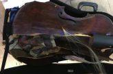 Alitalia odia i musicisti, post al veleno di Herzog dopo danni al suo strumento