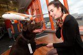 Grazie a easyJet i proprietari di animali viaggiano senza pensieri