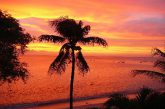 TripAdvisor svela le isole caraibiche a prezzi accessibili per una fuga dal freddo