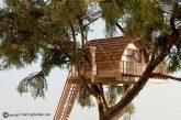 Regione riconosce le case sugli alberi come strutture ricettive