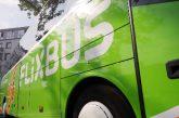 La Sicilia premia Flixbus: boom di presenze sui pullman low cost