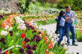 Ponti di primavera tra i suoni e profumi dei Giardini di Castel Trauttmansdorff