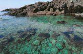 Al via la rassegna internazionale delle attività subacquee a Ustica