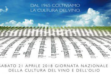 20 musei aperti gratis per la Giornata Nazionale della Cultura del Vino e Olio