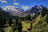 Il Parco dello Stelvio a portata di click con il Trekker Loan Program di Google