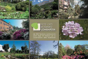 Orti botanici lombardi aperti per la 'festa del Solstizio d'estate'