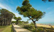 14 itinerari dell'Alto Adriatico ora a portata di smarthone