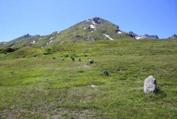 Estate in Valle d'Aosta tra birra, yoga e solstizio d'estate