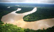 Nel cuore verde del mondo con Wwf Travel per conoscere gli indigeni Xixuaú