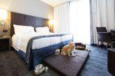 Best Western mette a disposizione 44 hotel a misura di quattro zampe
