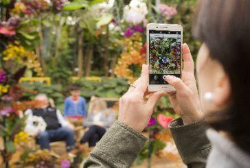 Caccia al tesoro all'Orchideenwelt, parco tematico tropicale che piace ai bambini