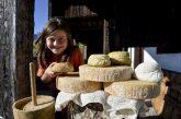 Scoprire i sapori della tradizione con una vacanza nelle malghe della Carnia