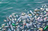 Federturismo lancia l'appello alle strutture turistiche a diventare plastic free