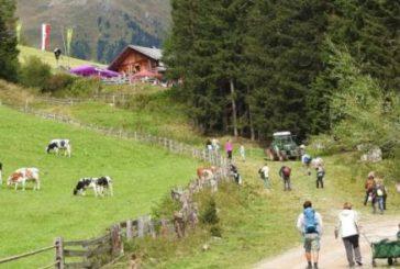 Festa delle Malghe in Val Casies pernottando allo Chalet Salena Luxury & Private Lodge