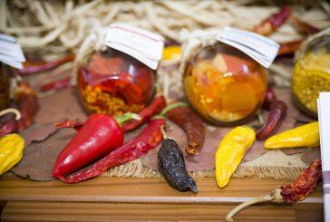 Pikkanapa, torna a Jesi il festival nazionale del peperoncino e della canapa