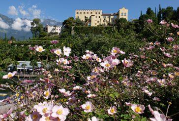 SKAL International Alto Adige Südtirol festeggia 60 anni