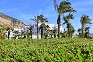 Il Saracen chiude la stagione a 20% di fatturato e ottime previsioni per i prossimi mesi