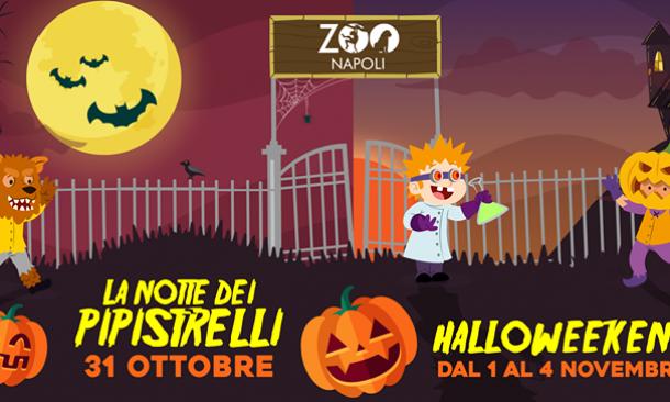 Halloween Napoli.é Tutto Pronto Per Un Halloween Da Paura Allo Zoo Di Napoli