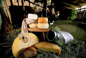A Sutrio per gustare i formaggi di montagna