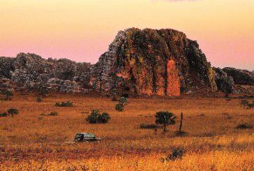 Il meglio del Madagascar in un unico catalogo targato Il Diamante