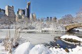 A NY anche d'inverno grazie ai prezzi vantaggiosi in hotel e musei