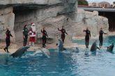 Vivere le festività all'Italia in Miniatura, Acquario di Cattolica e Oltremare Riccione