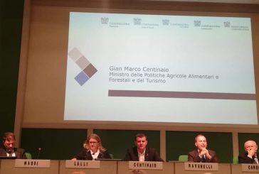 Centinaio a Torino: turismo è industria, Stato affianca privati