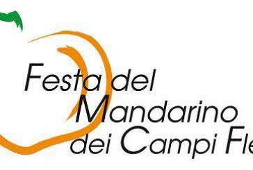 Al via 7^ edizione della Festa del Mandarino dei Campi Flegrei