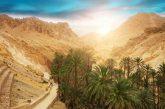 Tunisia vicina al traguardo dei 9 mln di turisti nel 2019