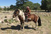 In Mongolia sulle tracce delle comunità nomadi