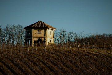 Passeggiata tra vino e storia nelle colline di Codevilla