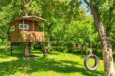 Case sugli alberi, nuova frontiera del turismo in Umbria?